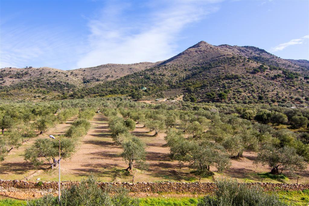 Ferienwohnung Rescator Resort 224 (926518), Rosas (Costa Brava), Costa Brava, Katalonien, Spanien, Bild 12